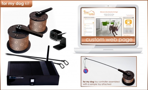 Фото: ipetcompanion.com