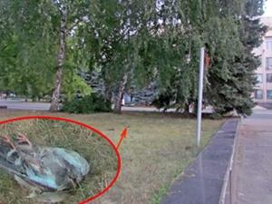 Птицы гибнут прямо в полете. Фото: www.vp.donetsk.ua.