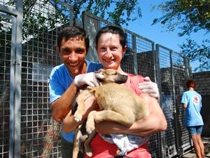 После стерилизации некоторые горожане забирали бездомных псов к себе домой.Фото Павла ВЕСЕЛКОВА.