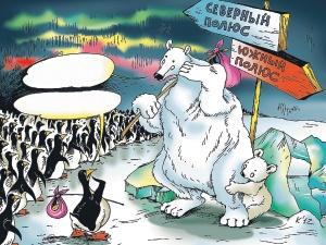 - А на вашем полюсе еще лед есть? - Да мы думали у вас на Севере разжиться... Рис. Катерины МАРТИНОВИЧ.